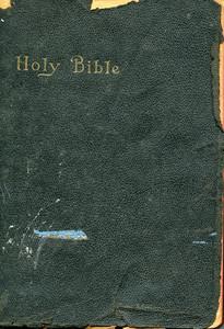 Book Bible 2 Texture