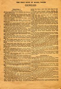 Book Bible 4 Texture