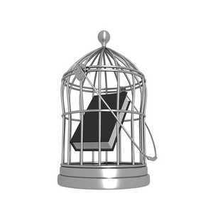 Book In A Bird Cage