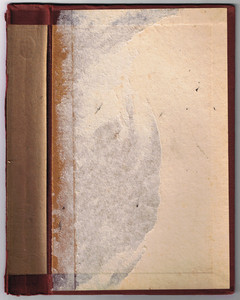 Book Interiors 1 Texture