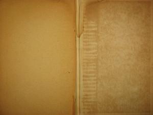 Book Interiors 41 Texture
