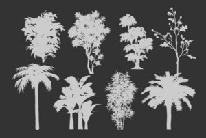 Botanic Vector Silhouettes