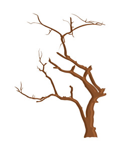 Branches Dead Tree Designs