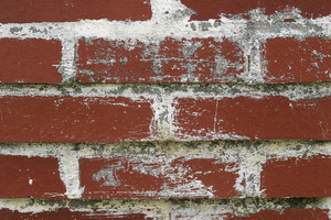Brick 20 Texture