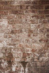 Brick 5 Texture