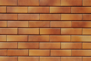 Brick Wall Background (close)