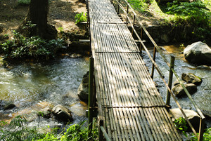 Bridges, bamboo, tropical rain forests,Thailand