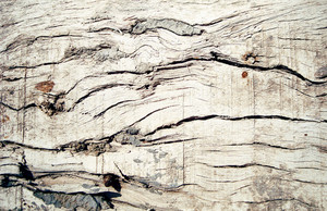 Broken_old_wooden_texture