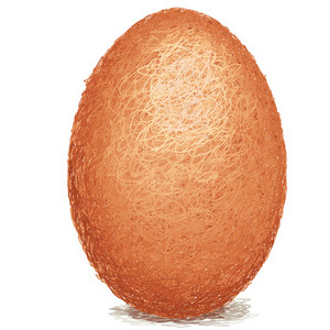 Brown-egg