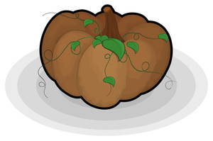 Brown Pumpkin Design Vector