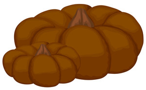 Brown Pumpkins Vectors
