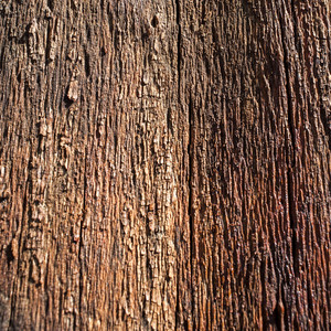 Brown wooden texture background