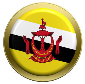 Brunei Flag On The Round Button Isolated On White.