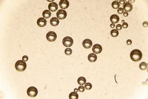 Bubbles 11 Texture