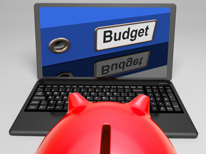 Budget File On Laptop Shows Financial Control
