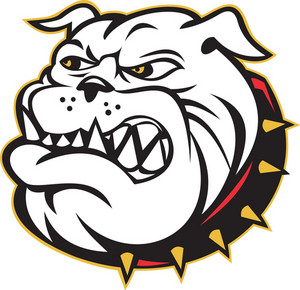 Bulldog Mongrel Dog Head Angry