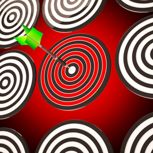 Bulls Eye Target Shows Focused Competitive Strategy