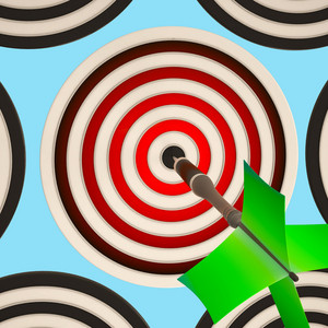 Bulls Eye Target Shows Focused Successful Aim