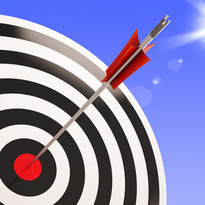 Bulls Eye Target Shows Performance Goal Achieved