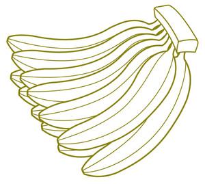 Bunch Of Bananas Drawing