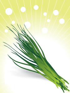 Bunch Of Chives Illustration