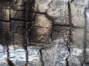 Burnt_wood_texture