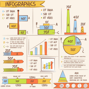 Business Infographic template layout with various colorful statistical bar