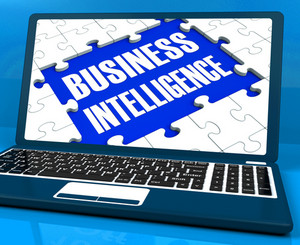 Business Intelligence On Laptop Showing Collecting Client Information