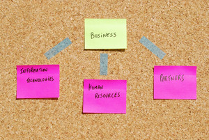 Business Organization Components