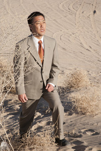 Businessman looking in desert