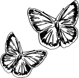 Butterfly Sketch. Vector Illustration