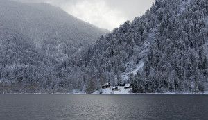 Cabin in dense forest at the edge of a lake in winter