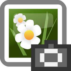 Camera Roll Tiny App Icon