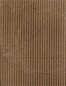Cardboard 12 Texture