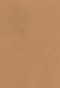 Cardboard 18 Texture