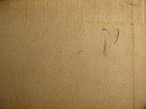 Cardboard 33 Texture