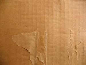 Cardboard 35 Texture