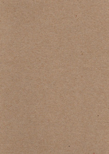 Cardboard 9 Texture