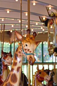 Carnival Giraffe