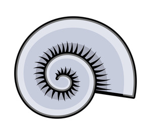 Cartoon Circular Sea Shell Vector