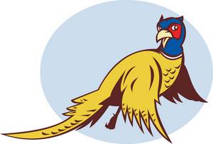Cartoon Pheasant Bird Flying