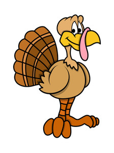 Cartoon Turkey Bird