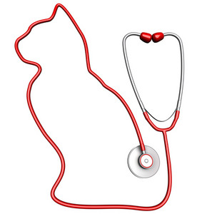 Cat-shaped Stethoscope