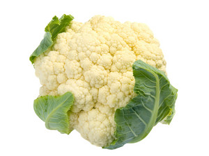 Cauliflower Studio Isolated On White