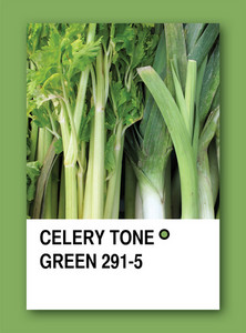 Celery Tone Green. Color Sample Design