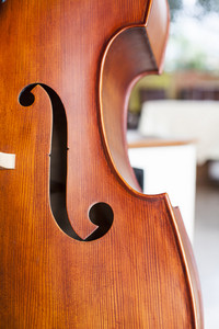 Cello wooden close up in restaurant