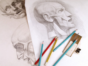 Charcoal Academical Anatomy Sketches Anathomy And Charcoal
