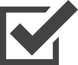 Check File Glyph Icon
