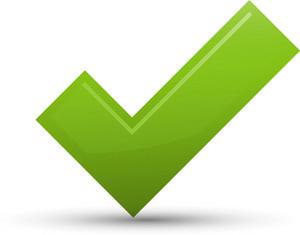 Check Lite Ecommerce Icon