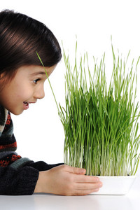 Cheerful kid with grass in hands